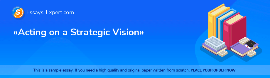 Free Essay Sample «Acting on a Strategic Vision»