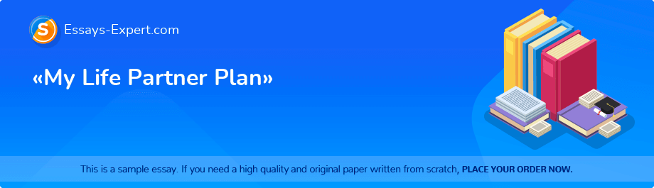Free Essay Sample «My Life Partner Plan»
