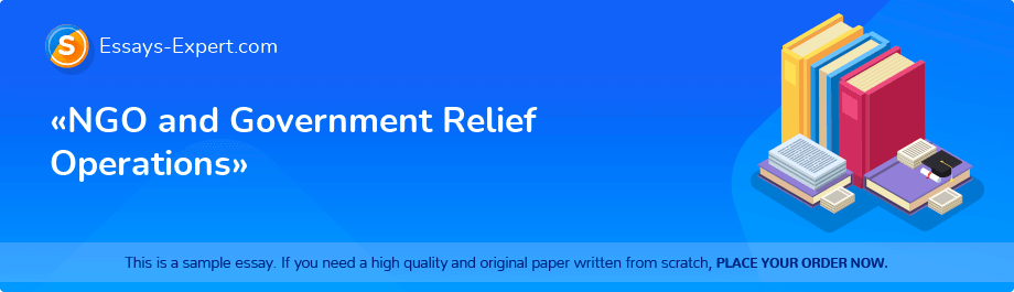 Free Essay Sample «NGO and Government Relief Operations»