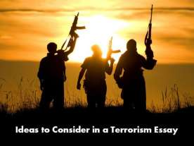 Terrorism Essay Writing Help